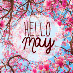 Well, hello there May.....